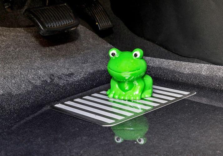 Мокрый коврик и лягушка