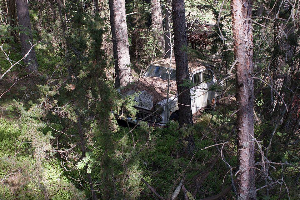 Советский автомобиль в финском лесу