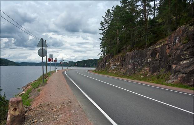 Дорога с белыми сплошными