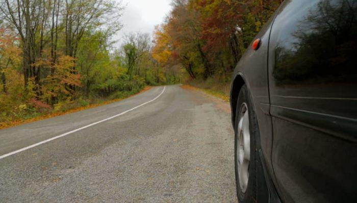 Автомобиль по дороге у леса