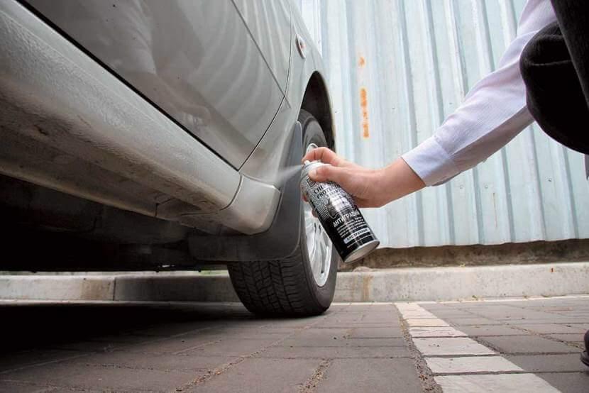 Чем обработать пороги автомобиля снаружи