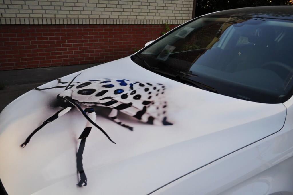 Пленка с рисунком на капот авто